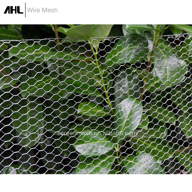 Buy Cheap China galvanized chicken wire mesh fence mesh Products ...