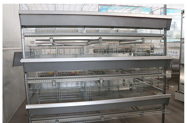 Egg laying machine collector Chicken farm layer cages for sale