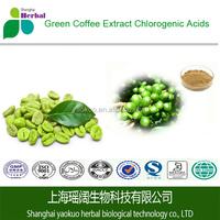 Green Coffee Bean P.E., Natural Green Coffee Bean Extract, Coffea Arabica P.E