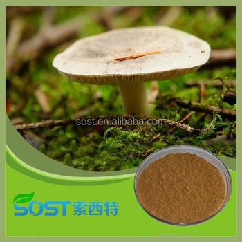 China Export Dry Oyster Mushroom Extract