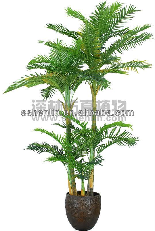 Tre tronco fan decorazione albero di palma palma for Palma pianta