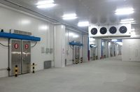 Factory promotional saving cost blast freezer cold room