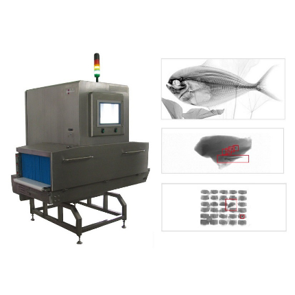 Contaminants X Ray Vision Scan system for Food safety