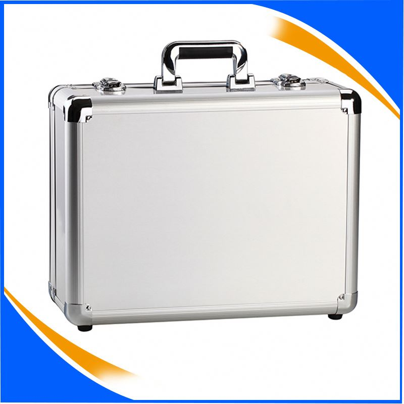 Aluminum Instrument/ Tool /Hobby/ Sample/ Carry Case