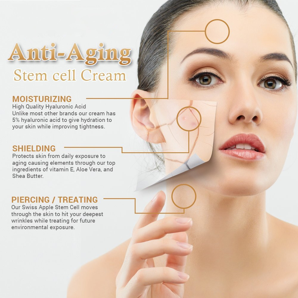 High Quality Anti-aging Anti-wrinkle Stem Cell Cream For..