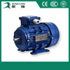 electric motor price