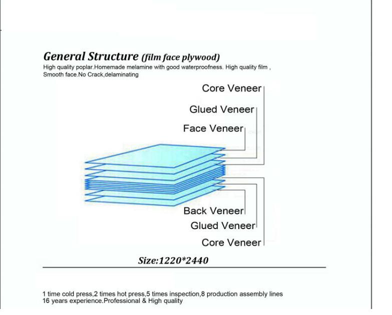 Construction Plywood Glue Shear Strength In Mycological Test a) Individual  Min 800 Newton  B) Average Min  1000 Newton - Buy 9-ply