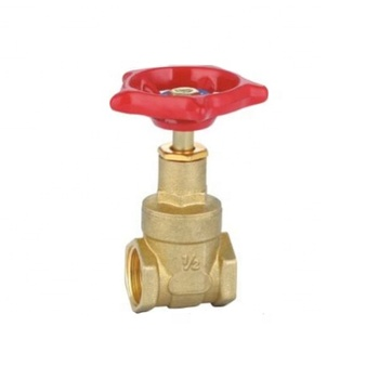 1 inch Pegler type brass gate valve for water