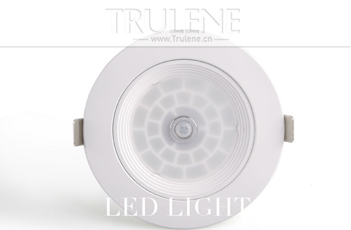 LED light Downlight (3).png