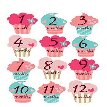 baby stickers month 1 12 with bonus just born sticker document age