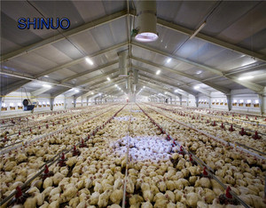 Prefabricated Chicken Egg Poultry Farm Barn Buildings