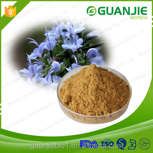Factory Supply Organic Rosemary Extract Powder,Ursolic Acid,Rosmarinic Acid