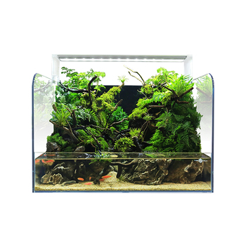 FIREAQUA manufacturer supplies exquisite small glass aquarium
