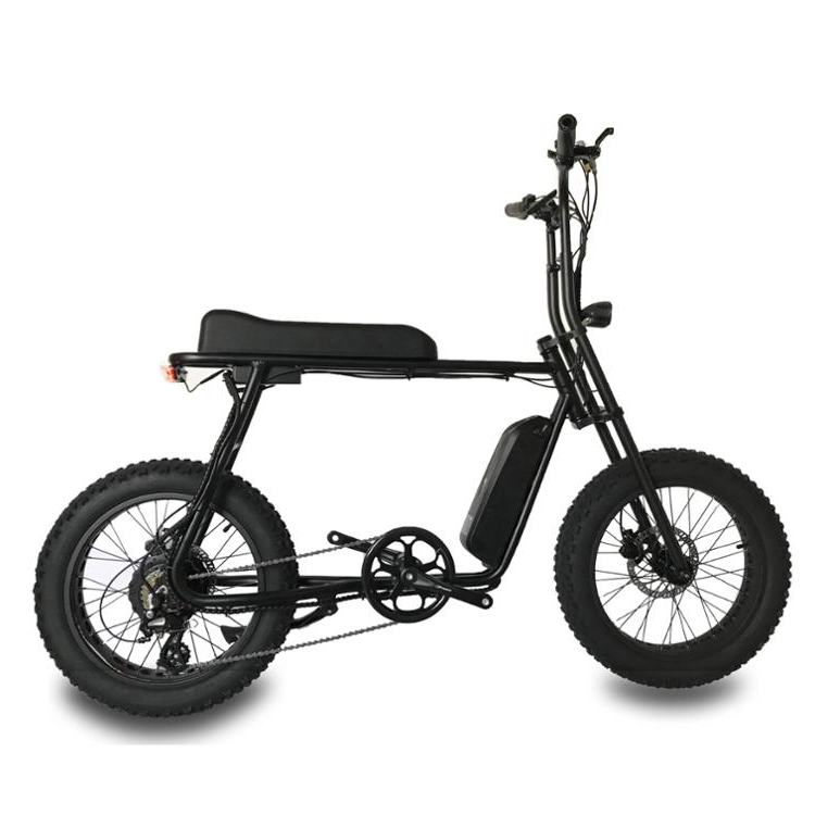 2019 Super Mario-Retro 20 48v 500w Fat Tire ebike with rear motor, Color can be ordered