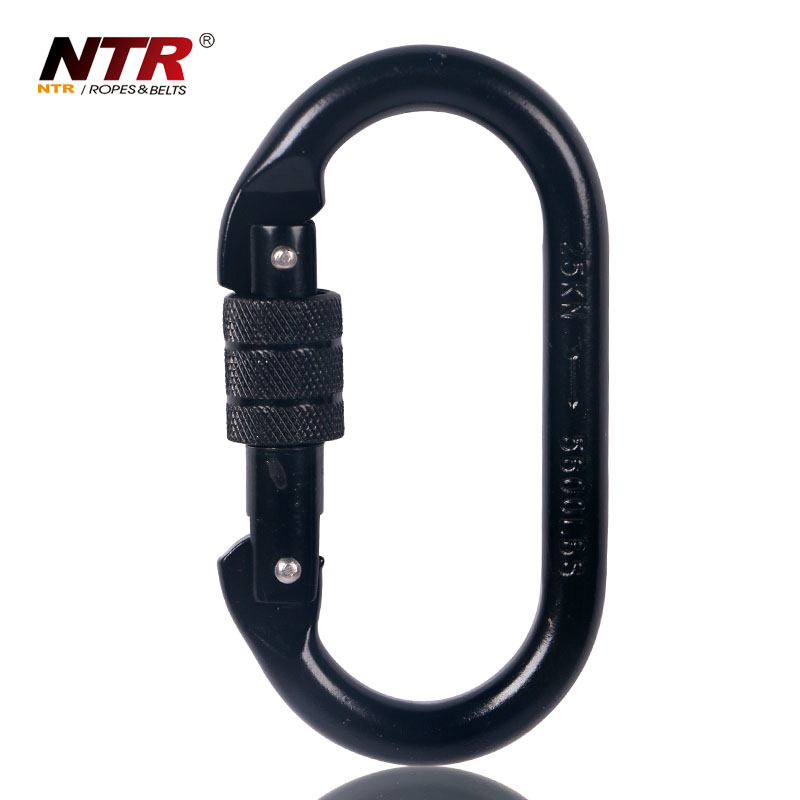 Alloy Steel Oval Screw-Lock key chain Carabiner