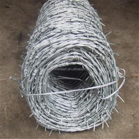 buy high quality cheap common barbed wire