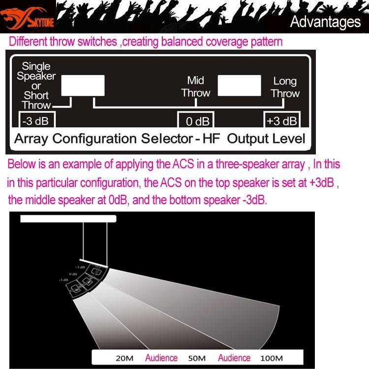China Skytone New Vera12+ 12 Inch Line Array Sound System Dj ...