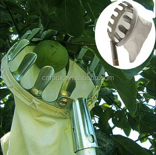 Good design Fruit Picker / Fruits Picking Tool / garden tool fruit picker