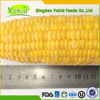 Passed KOSHER Grade A Organic Iqf Sweet Corn Kernel