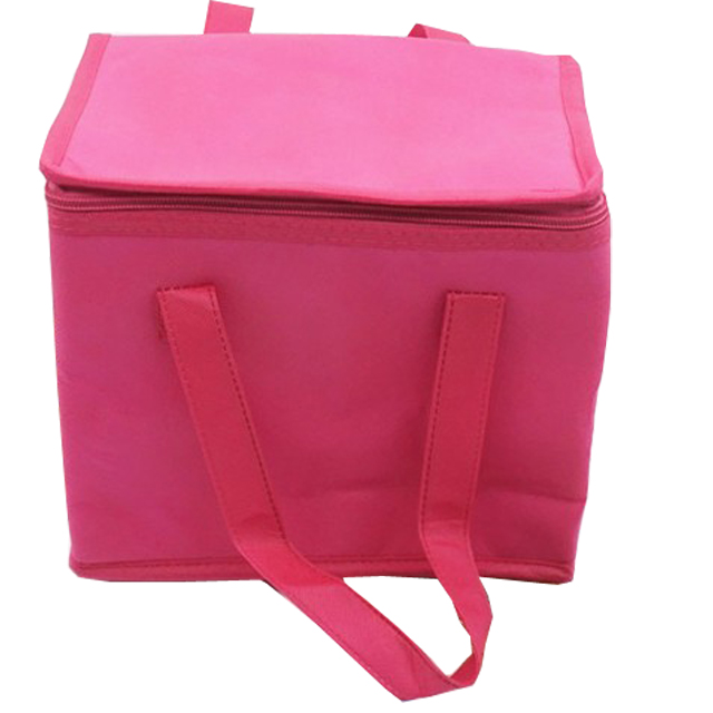 Hottest custom size 12 can non woven insulated lunch cooler bag for promotional