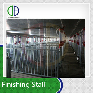 China factory supply metal material finishing stall steel pig pen swine feed equipment