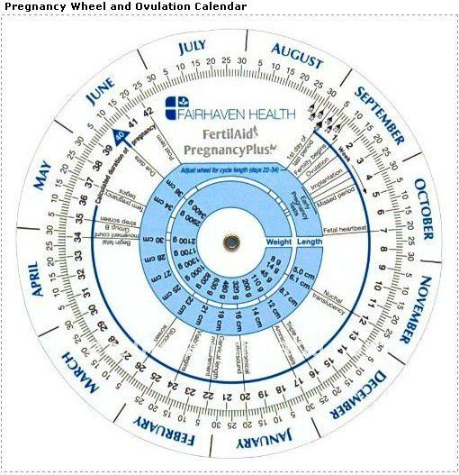 pregnancy chart: Pregnancy due date calculator wheels wheel chart style buy