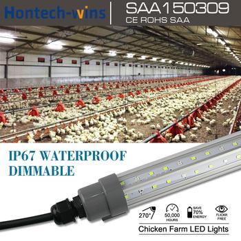 Chiken heat l& poultry farm dimmable led tube light T12 & Chiken Heat Lamp Poultry Farm Dimmable Led Tube Light T12 - Buy ... azcodes.com