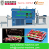 HAS VIDEO PS PP PET disposable plastic food container machine