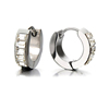 Men and Women 316L Stainless Steel Hoop Hinged Earrings