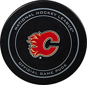 2015 NHL Stanley Cup Playoffs Calgary Flames Hockey Game Puck in Acrylic Cube