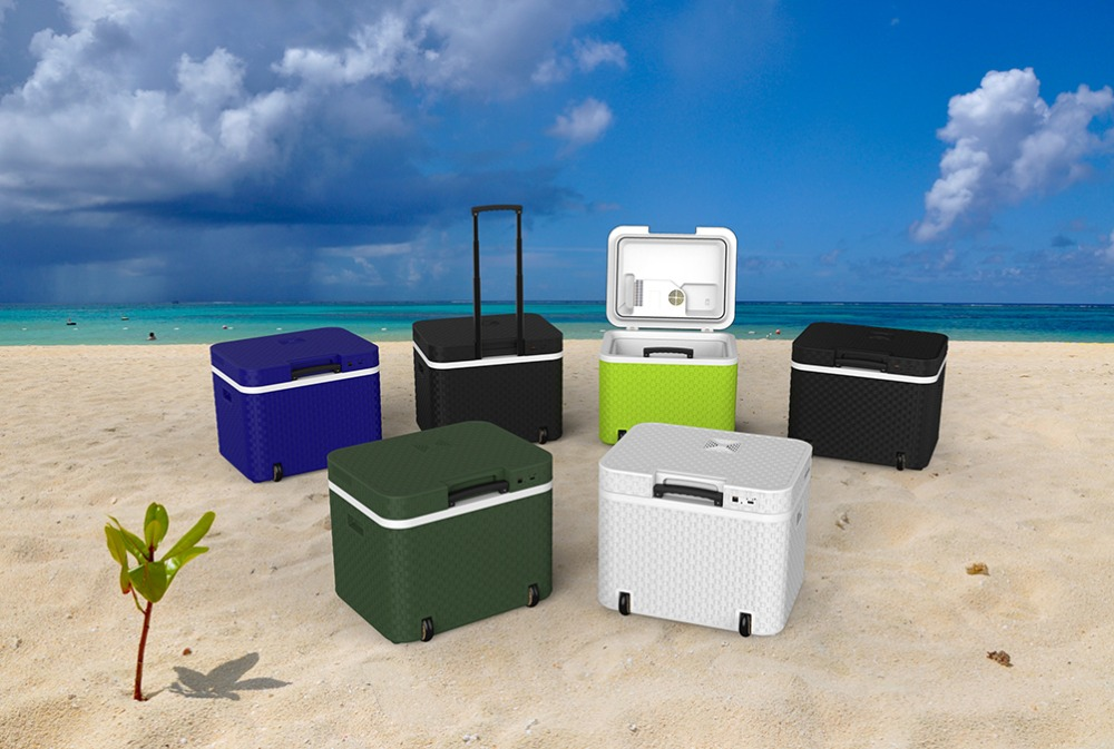 with wheels Thermoelectric cooler warmer hot cold mini fridge