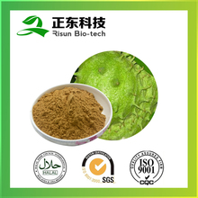 Spary Dried Graviola Extract 10:1 Powder