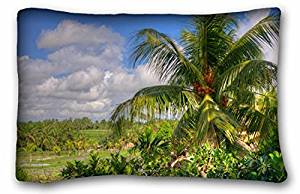 Generic Baby Boys' Landscapes Beautiful view somewhere in Bali sky palm nature 20x30 Inch