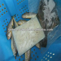 block frozen food fish and iqf marine fish online