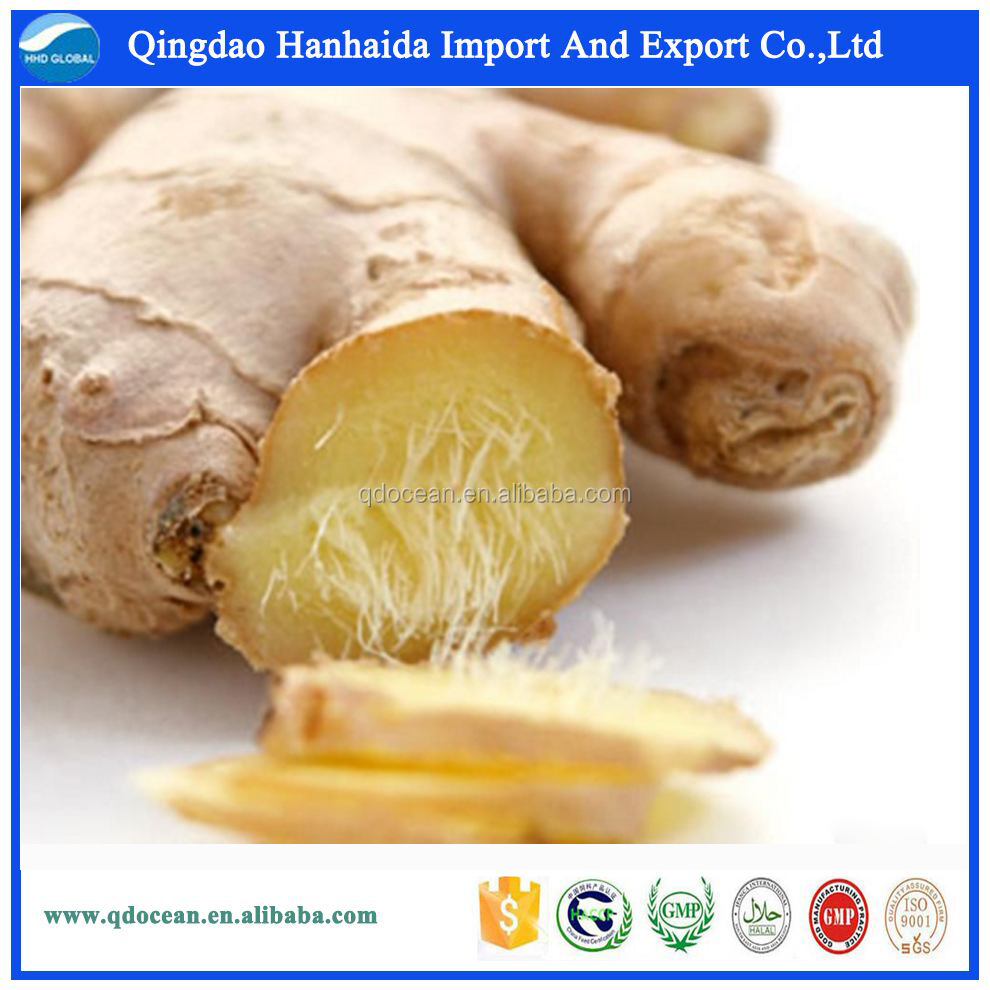 Chinese fresh ginger supplier provide bulk fresh ginger with competitive price