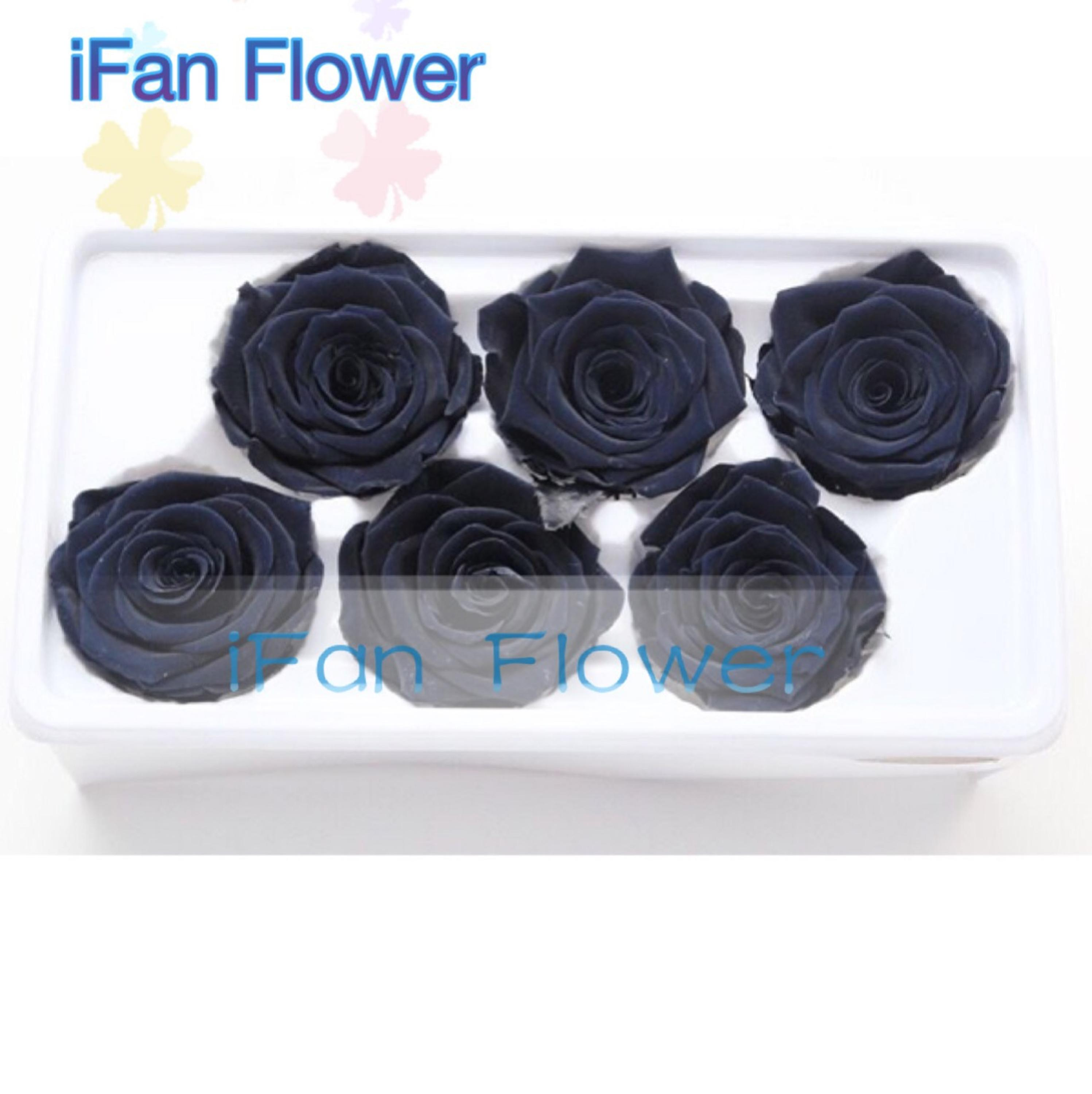 Royal black Color Never Withered Rose Preserved Flower Upscale Preserved Flowers wedding gift