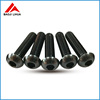ISO7380 Titanium Hexagon Socket Button Head Screws