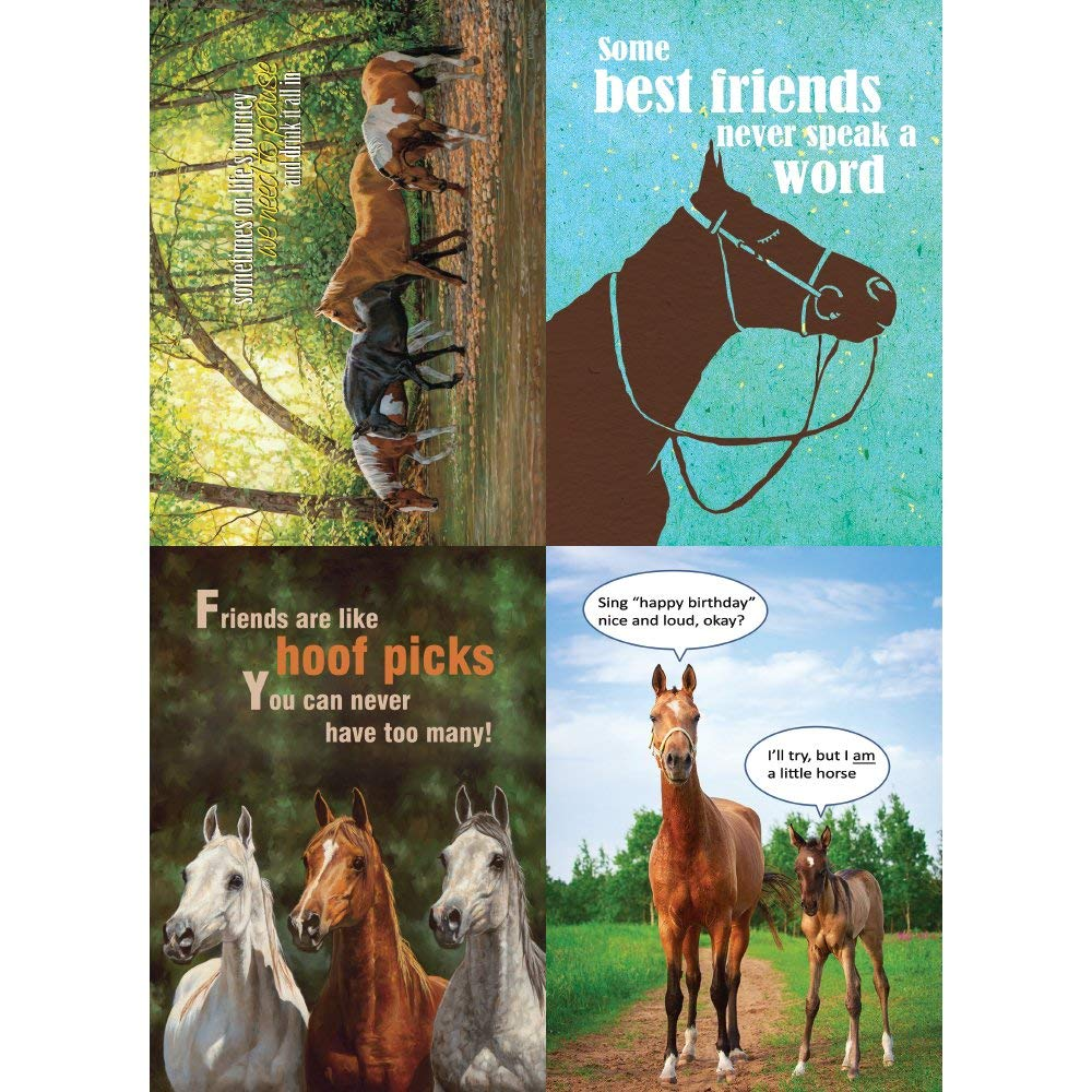 Get Quotations Tree Free Greetings Horse Friends Birthday Card Assortment 5 X 7 Inches 8