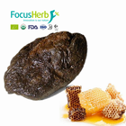 FocusHerb Forever Bee Propolis