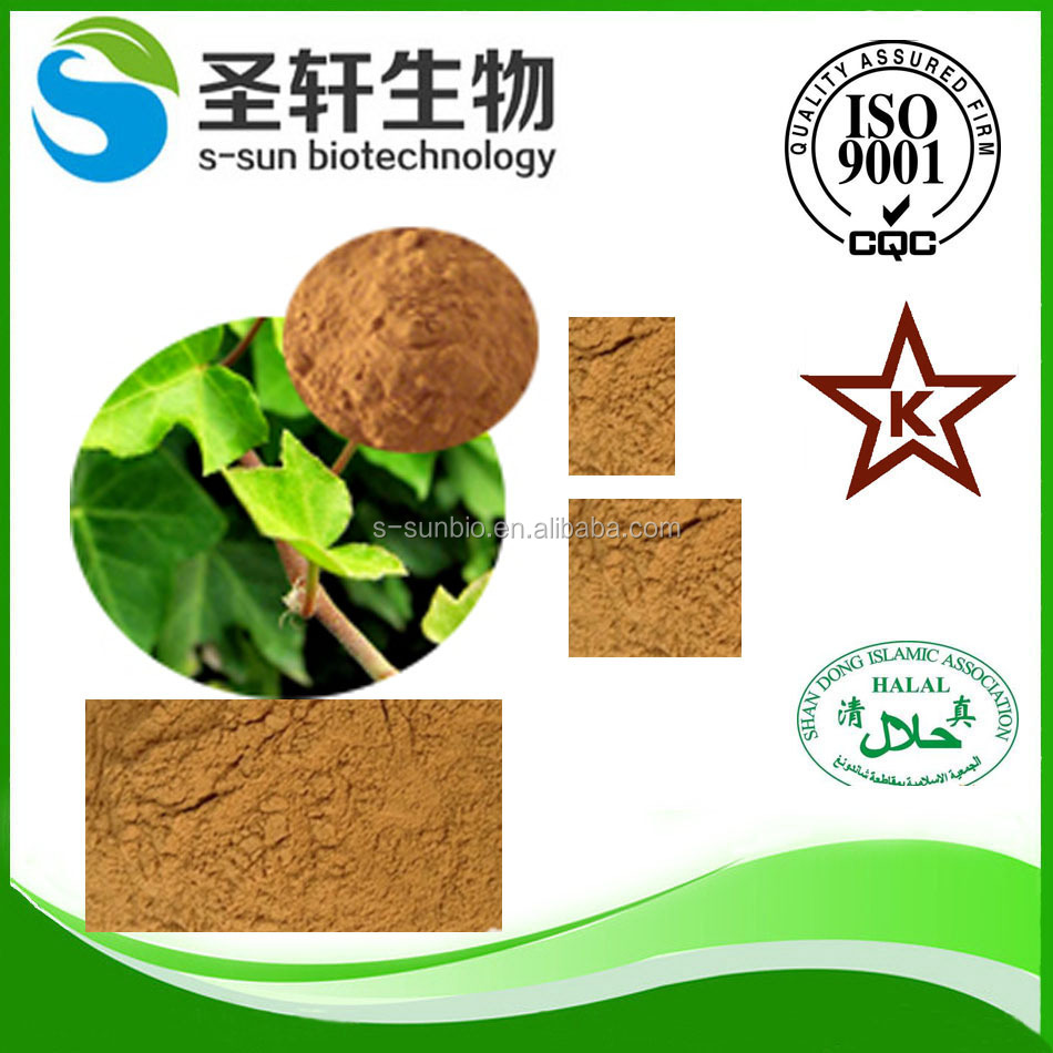 Ivy leaves herb extract powder for Cosmetics & personal care products with High purity Hederacoside C