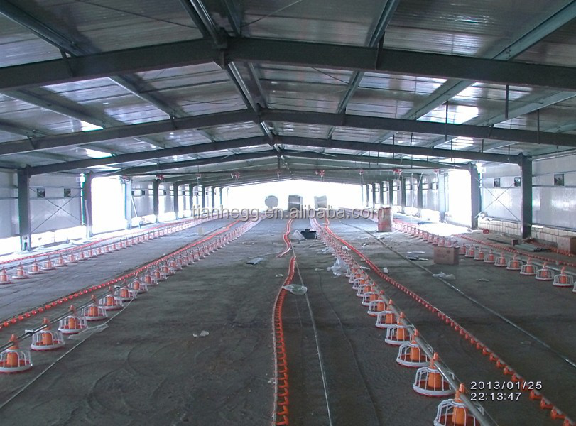 Agriculture Steel Structure Building warehouse / steel Structure Indoor Horse Riding Arena