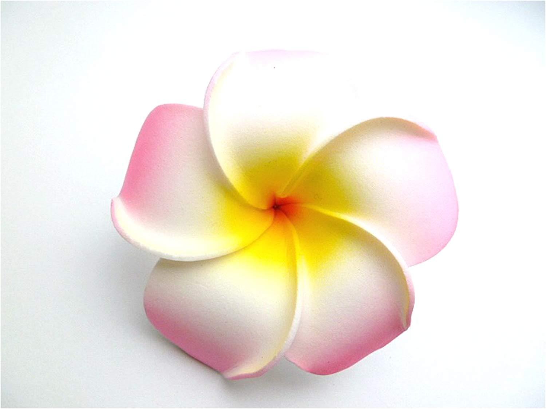 Cheap india hawaiian foam flower hair clips find india hawaiian get quotations womens fashion 3 pcs hawaiian plumeria flower foam hair clip 90mm izmirmasajfo