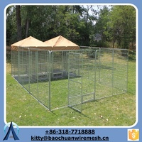 2015 wholesale the dog kennel /dog cage metal /pet cage in anping factory China