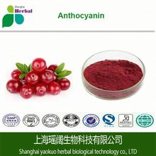 Bulk Cranberry extract and lutein supplement