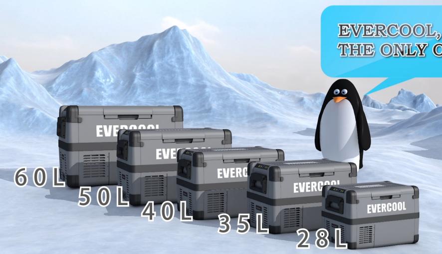 Evercool coche 12v CC refrigerador congelador compresor portátil 50L