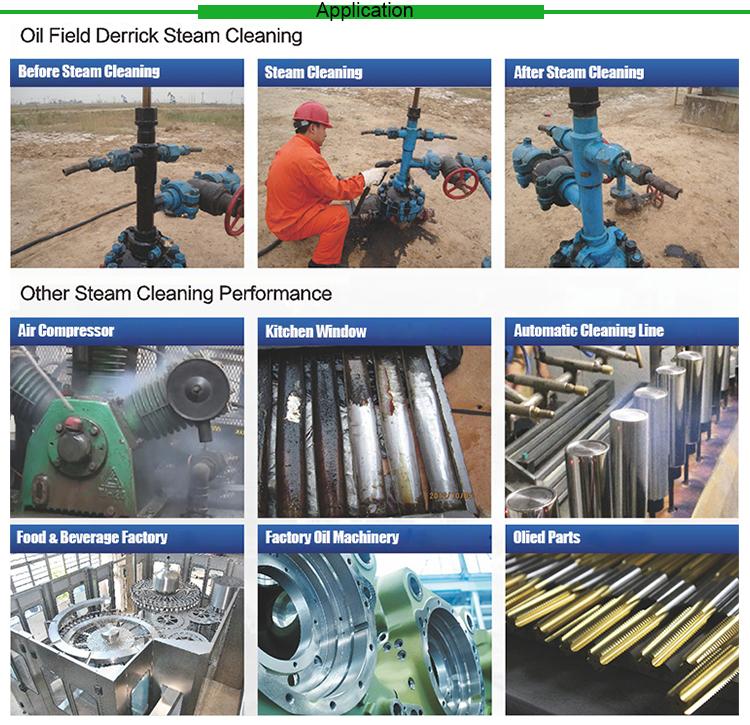 30KW Industrial Steam Cleaner HF3090