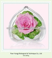 top grade fresh preserved flower rose paper gift bag