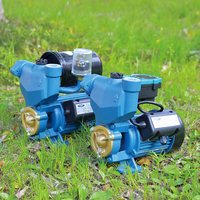 PS-126 Home Use Small Water Pump