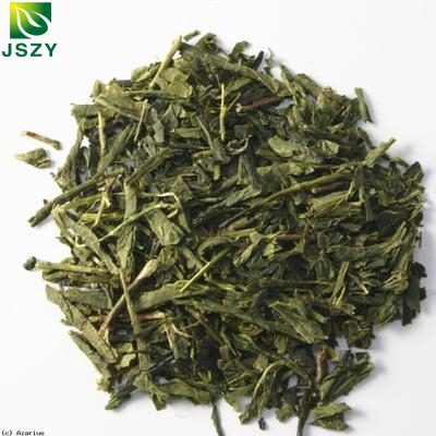 Japanese Sencha Green Tea Steamed Tea - 4uTea | 4uTea.com