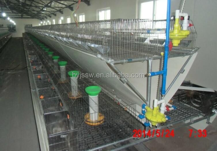 BAIYI New Design Automatic Rabbit Farming Cage For Industry Design